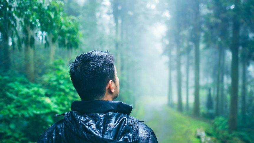 8+ Contoh Cara Menjaga Lingkungan Sekitar